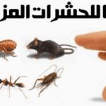 مكافحة حشرات بالرياض وداعًا للحشرات المزعجة0507007581