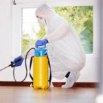 فيه حشرات في بيتك مسببة لك إزعاج؟  مع شركة مكافحة حشرات بالرياض أنسى الإزعاج0507007581