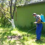 خدمة رش المبيدات و مكافحة الحشرات من المركز المتقدم